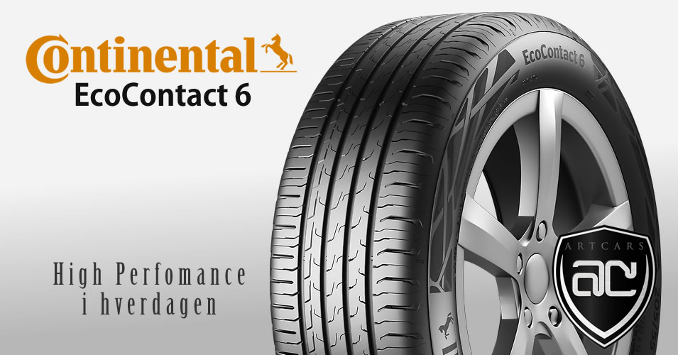 Continental Eco Contact 6